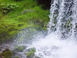 ¿Tienes sed? ¡Bebe del agua viva!