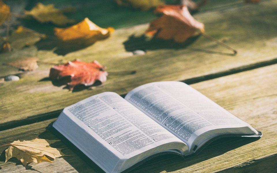 Bosquejos básicos de la vida cristiana – La Palabra se hizo carne